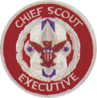 Chief Scout Executive
