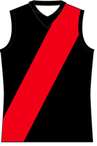 Essendon2011guernsey.png