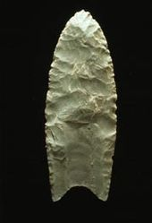 """A Clovis  blade with medium to large lanceolate spear-knife points. Side is parallel to convex and exhibit careful pressure flaking along the blade edge. The broadest area is near the midsection or toward the base. The Base is distinctly concave with a characteristic flute or channel flake removed from one or, more commonly, both surfaces of the blade.  The lower edges of the blade and base is ground to dull edges for hafting. Clovis points also tend to be thicker than the typically thin latter stage  Folsom points. Length: 4–20 cm/1.5–8 in. Width: 2.5–5 cm/1–2"