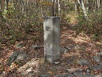 "A square stone post with the letters ""NY"" on one face set into the ground in a wooded area"