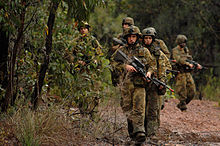 A group of men wearing camouflaged military uniforms and carrying guns walking through bushland