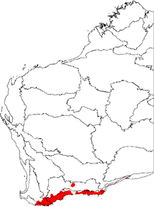 a map of Western Australia with the floristic regions delineated, and an area in the bottom marked in red