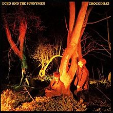An album cover showing four men amongst some trees at night. In the top left-hand corner of the cover is the band's name and the album's name is in the top-right corner, both are in yellow text.