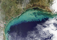 Sediment in the Gulf of Mexico (2).jpg