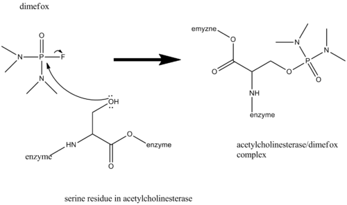 """mechanism of inhibition of acetylcholine by dimefox"""