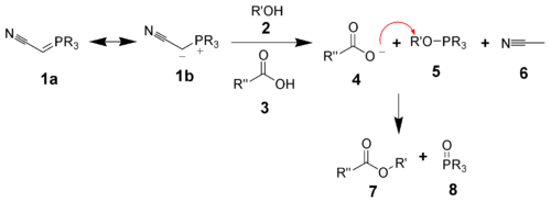 The mechanism of the phosphorane variant of the Mitsunobu reaction