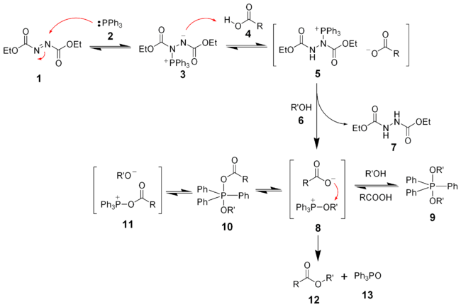 The mechanism of the Mitsunobu reaction