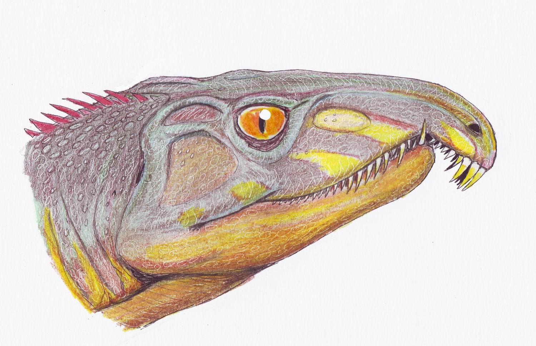 Archosaurus_ross1DB.jpg
