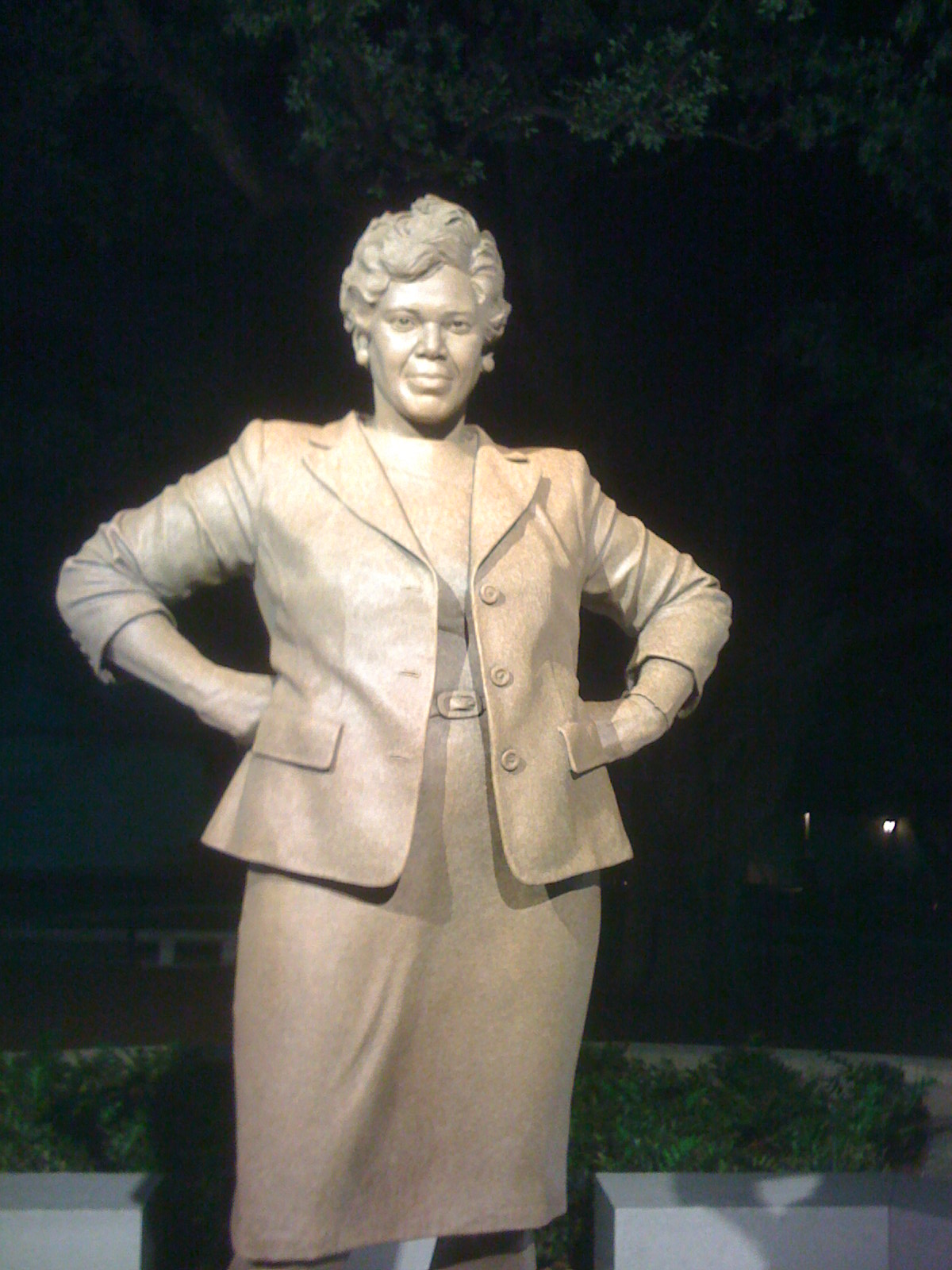 an analysis of mary beth rogers in barbara jordan american hero Browse all literature study guides on enotescom analysis, and criticisms for barbara jordan: american hero by mary beth rogers.