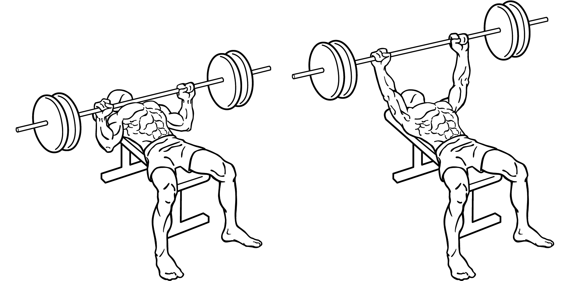 Decline Press Form a Decline Bench Press Elevates