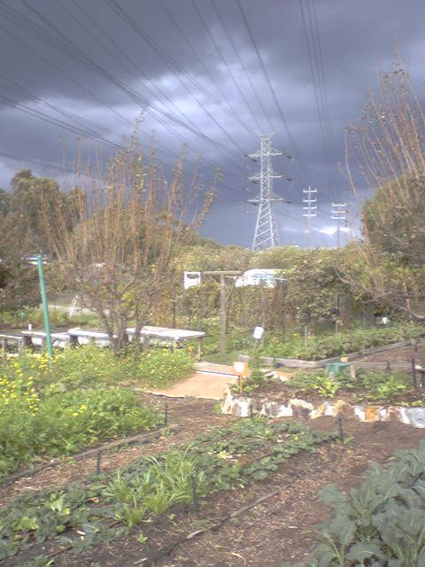 organic farming and ceres Ceres organics strive to make organic food available through sourcing quality products that are sustainably produced australia, nz & worldwide delivery page 3.