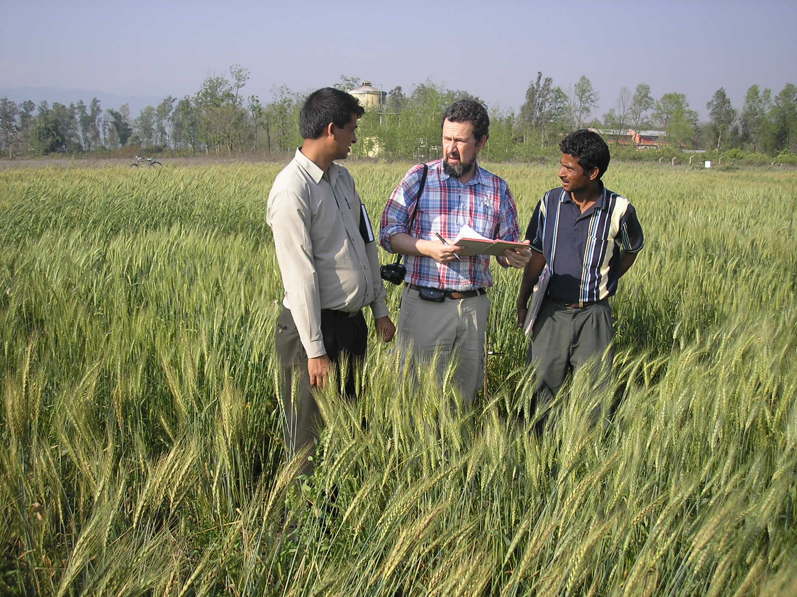 phd thesis on agriculture There are a wide variety of research topics available to graduate students in abe and modeling of agricultural research topics thesis and dissertations.