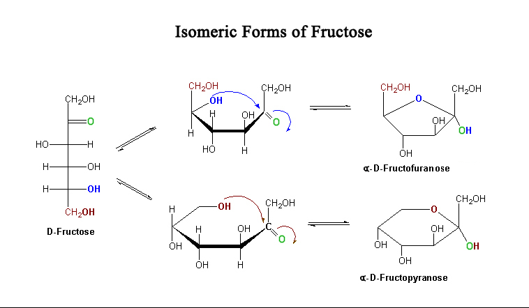 mw d glucose and fructose relationship