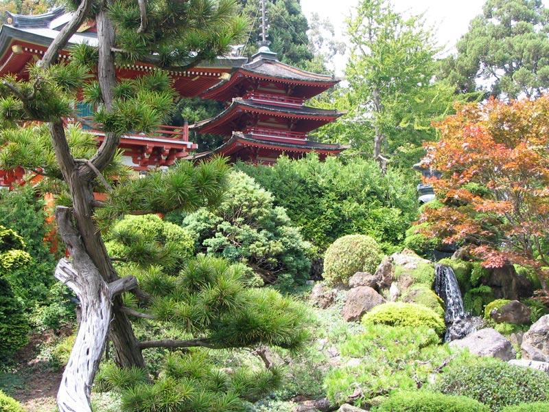 Japanese garden for Jardin japones hagiwara de san francisco