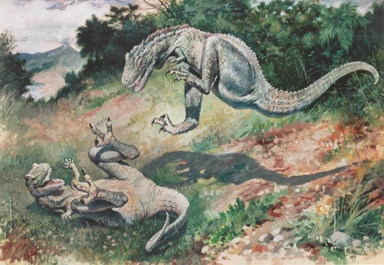 Osborn American Museum Of Natural History