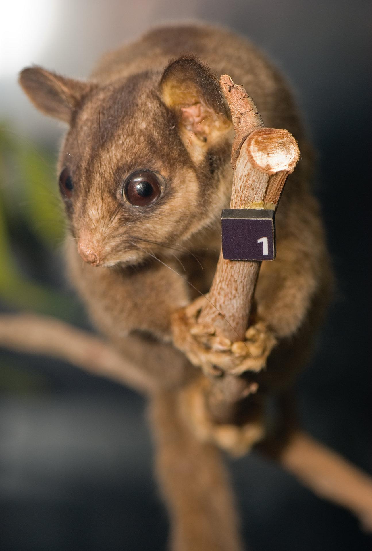 CMOS Содержимое CMOS RAM. взлом счастливой фермы в контакте nevosoft.
