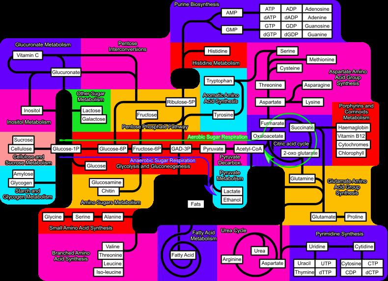 ebook Основы логистики: Рабочая программа, задание на контрольную работу