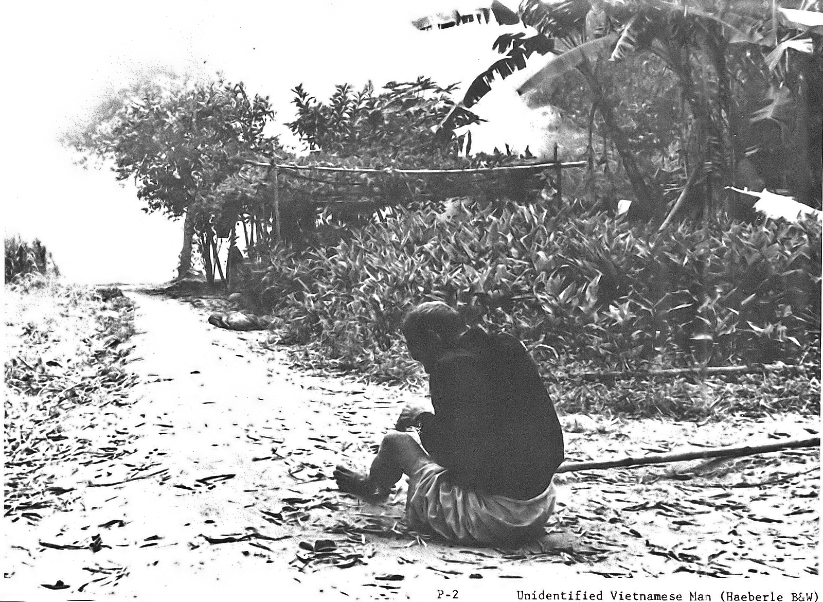 an analysis of the my lai massacre My lai massacre soldiers are trained to always follow orders, and to never question orders but that belief is somewhat illogical soldier's are to obey any lawful.