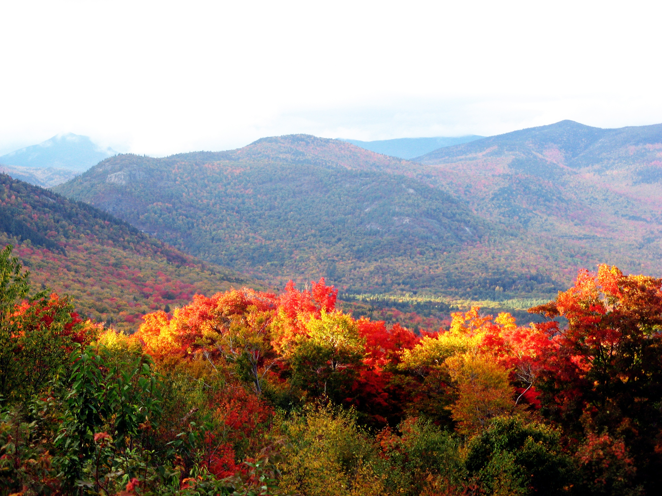 ... hardwood trees in New Hampshire turn colors, attracting many tourists
