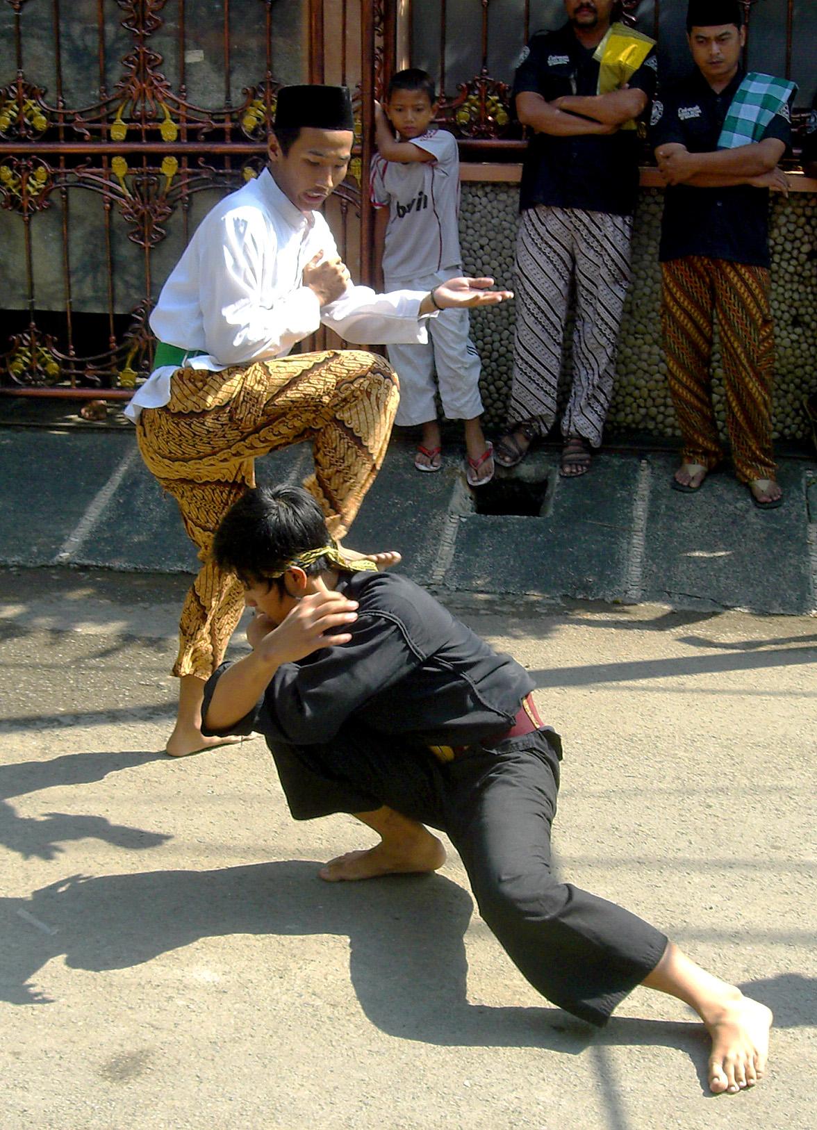 Indonesian Pencak Silat