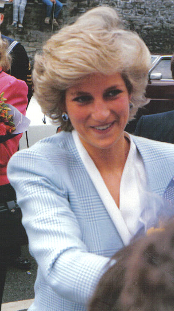 wales divorced personals Diana, princess of wales (born diana frances spencer 1 july 1961 – 31 august 1997) was a member of the british royal family as the first wife of charles, prince of wales, the heir apparent to the british throne.