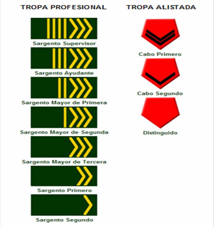 Argentine Army enlisted rank insignia
