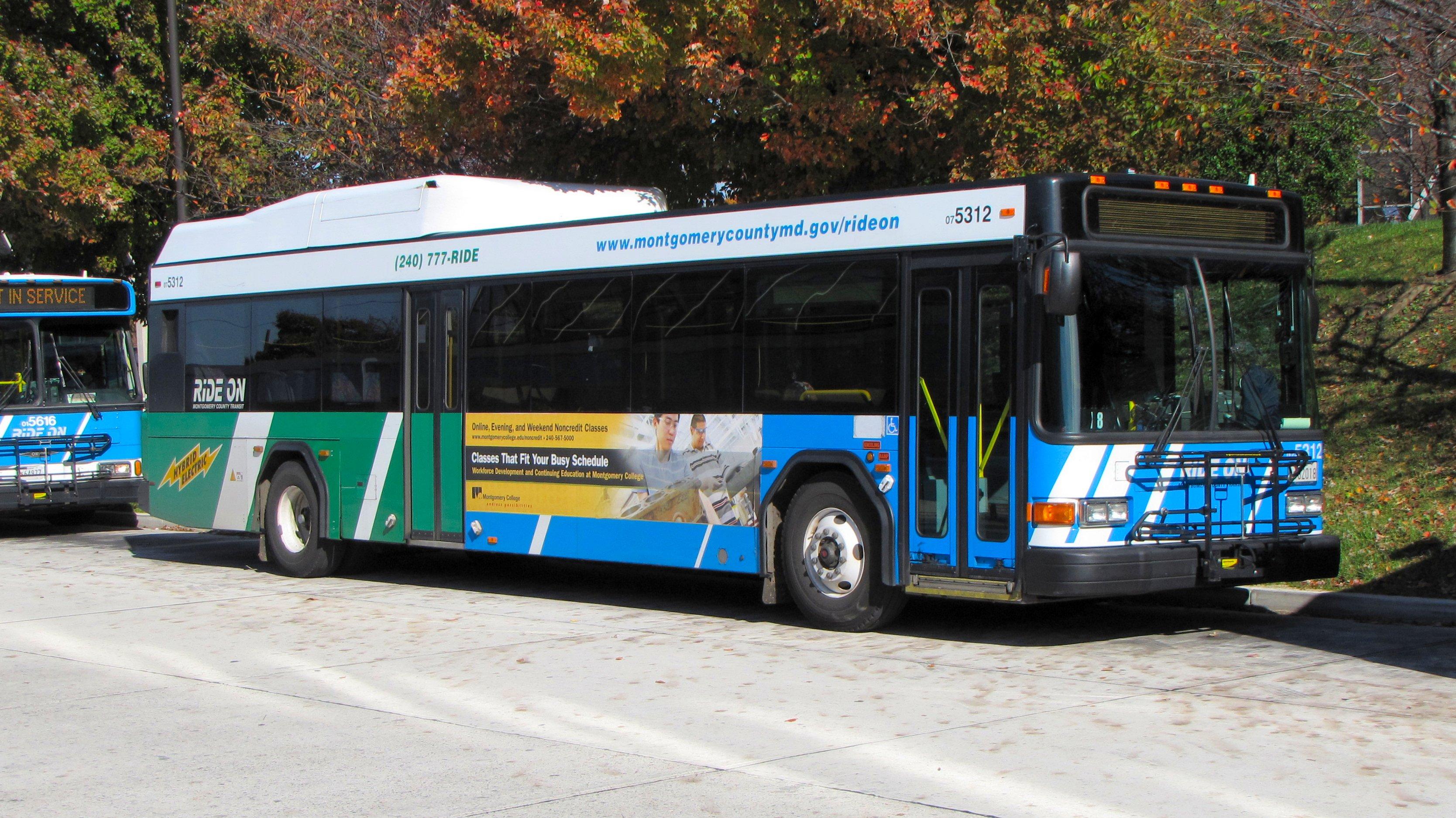 Bus Routes & Schedules