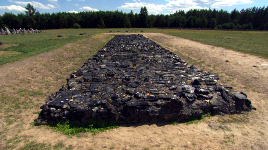 the extermination camp treblinka an overview essay Analyzes the mixing of fiction and fact in jean-francois steiner's `treblinka,' a documentary account of life at the treblinka extermination camp based on written evidence and interviews of survivors.
