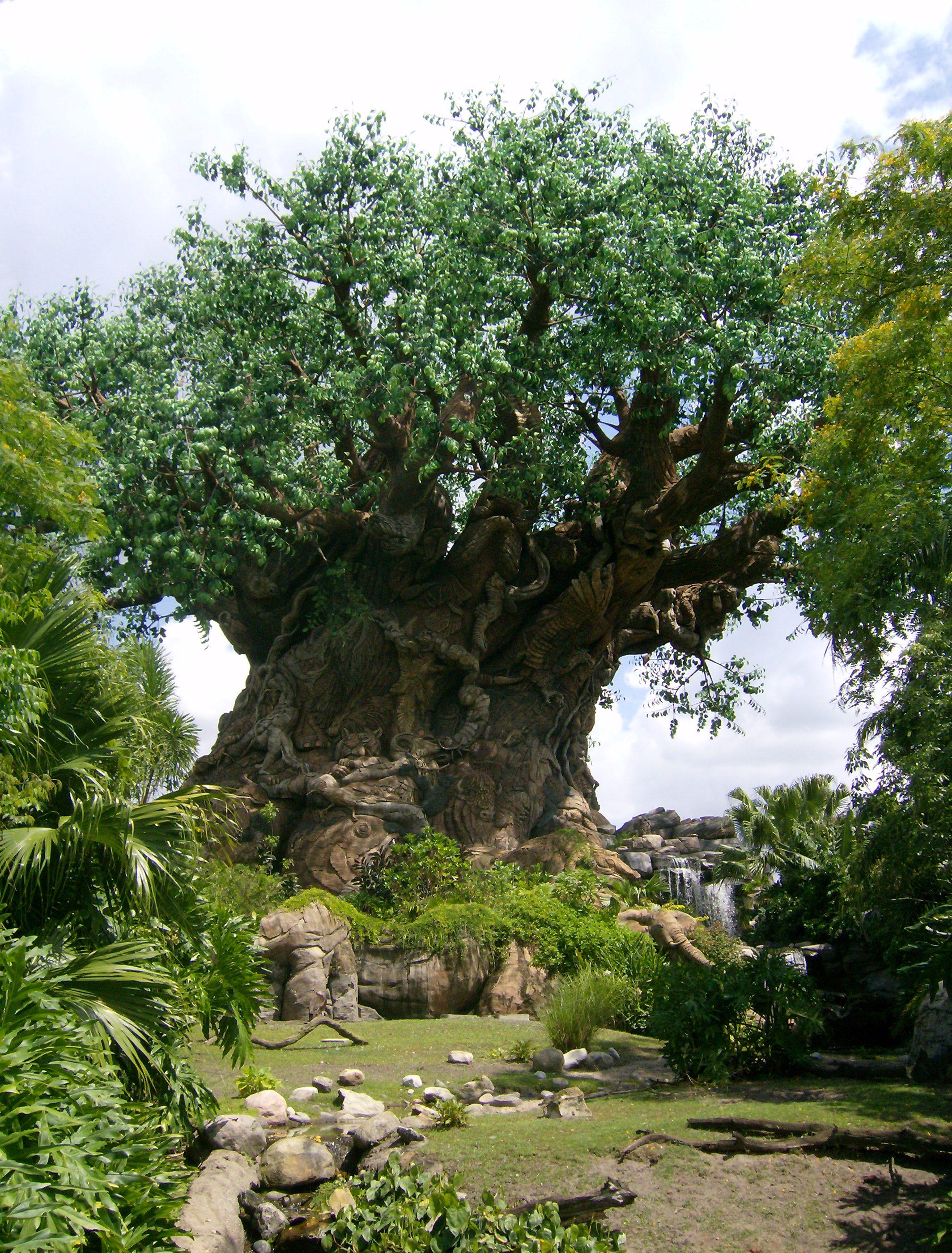 42. Дерево жизни, символ Диснеевского Королевства Животных